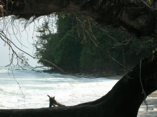 """Дорога"" в Lalagi в прилив. Через джунгли нереально"