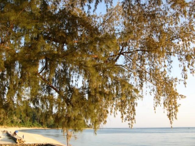 Поселковый пляж. Купаться плохо, под водой камни
