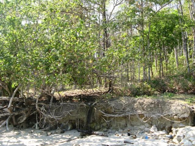 Родничок питьевой воды на берегу. Слева от него начинается тропа вверх к посёлку