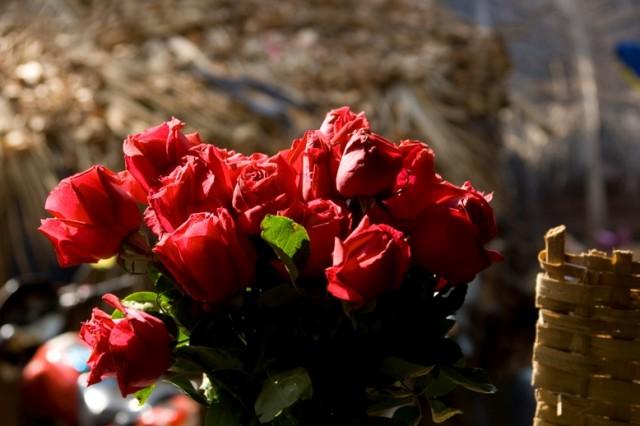 Арамболь. И здесь растут розы