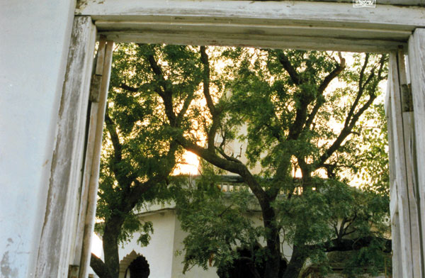 Дверь в дворик вриндаванского храма