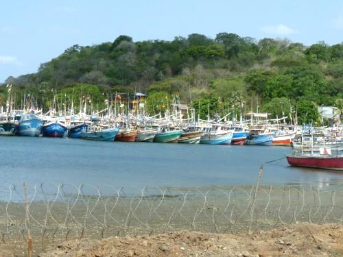 Порт в Тринко