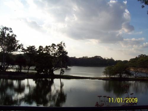 Ботанический сад. Озеро