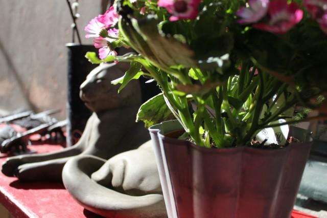 даже каменные коты греются на солнышке :)