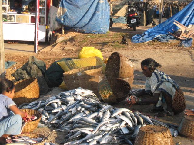 Рыбачки в Колве