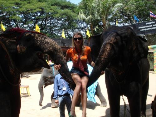 Ленка на слонах. я не решился %))