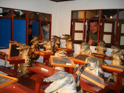забыл крокодильчиков из зоопарка прикрепить