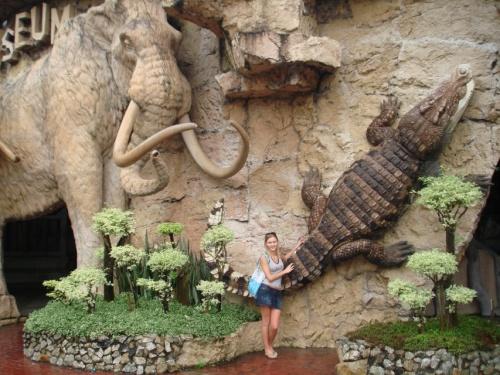 на  входе в крокодилий цирк