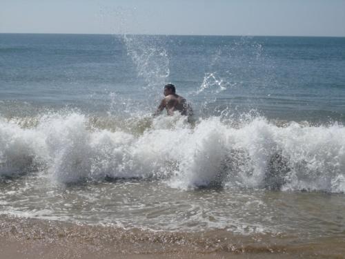 первая волна