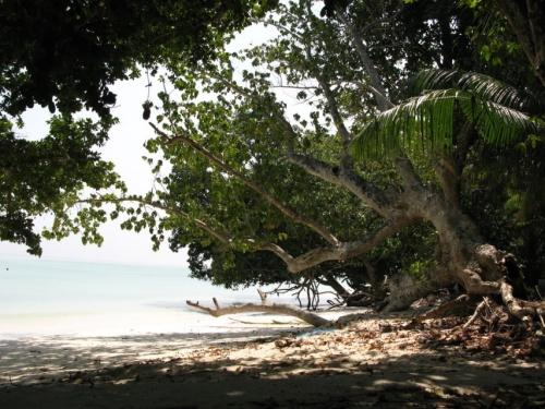 Типичный пляж восточной стороны