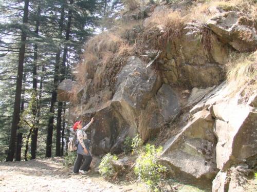дорога в лесной монастырь