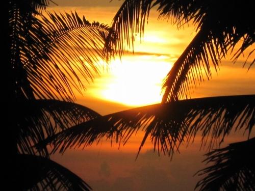 Вечернее солнце Кералы
