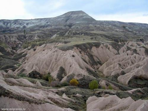 Долина Сладких Грез и Вечных Туманов