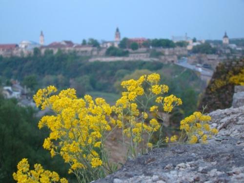 Весна в Каменце-Подольском
