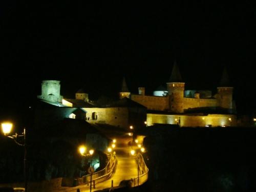 Замок в Каменце ночью