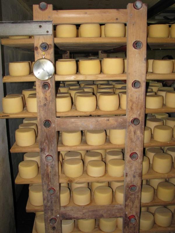 сыр офигенной вкусноты!!!