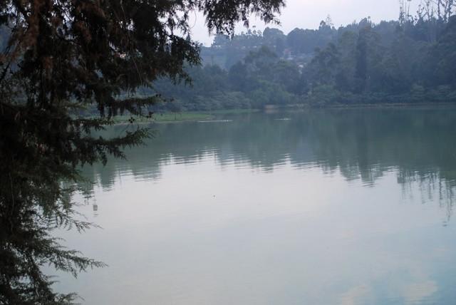 можно прогуляться до озера