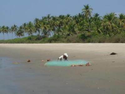 Пляж Таркали