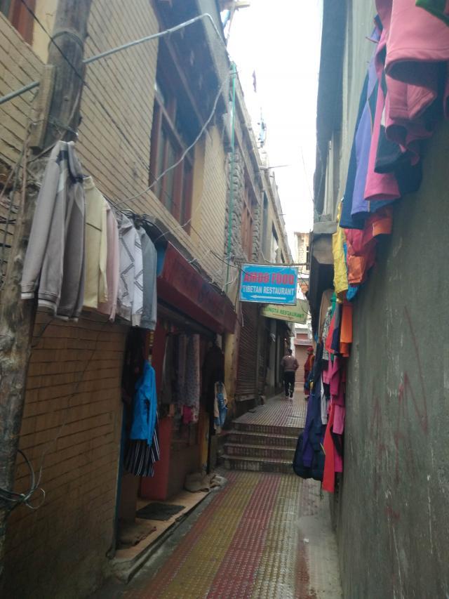 Amdo в переулке напротив