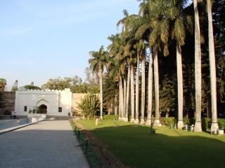Сады Пинджора