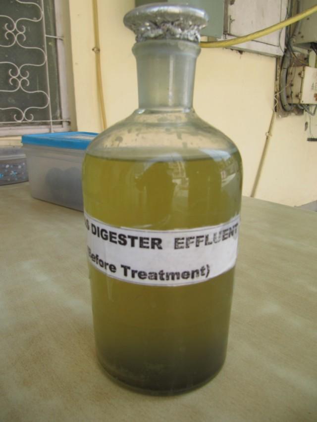 """при музее есть лаборатория по очистке сточной воды-  это """"до"""""""