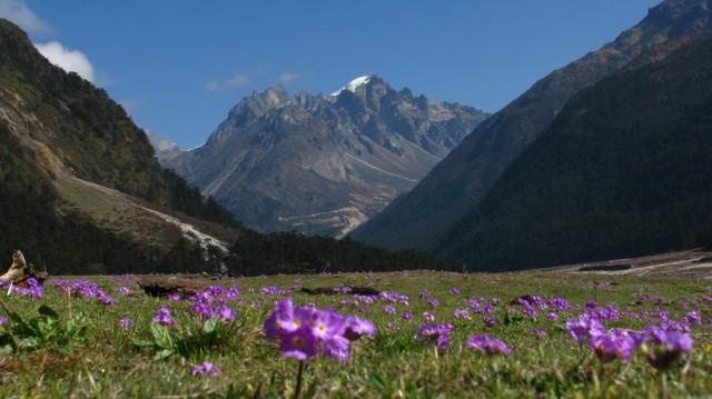 Долина Юмтанг