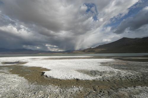 Отложения соли на берегу озера Цо Кар