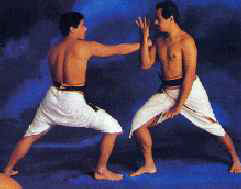 Боевое искусство Варма-калаи