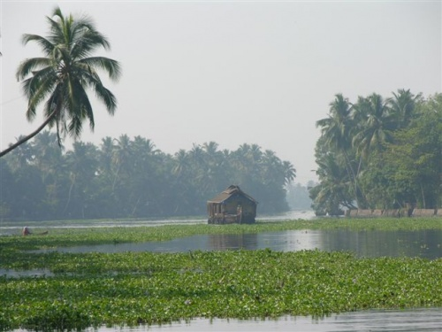 По каналам Кералы