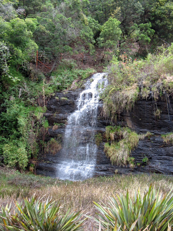 В окрестностях Кодайканала много водопадов