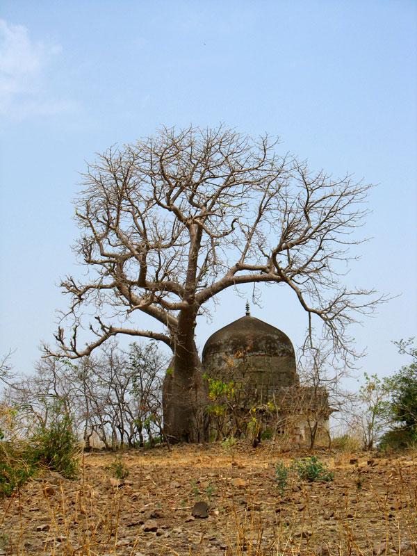 Манду. Гармония природы и архитектуры