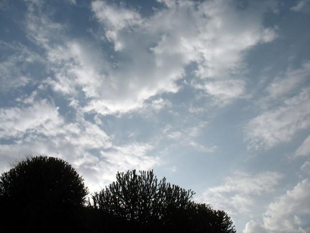 Небо над Эллорой