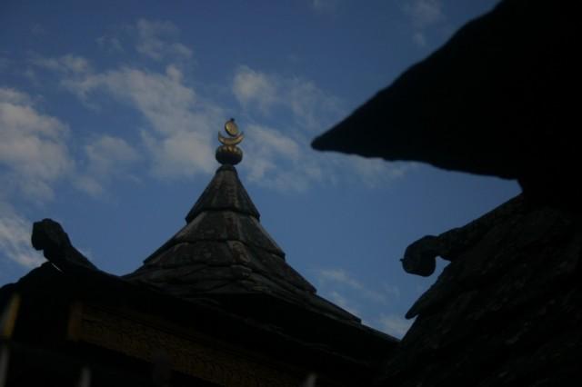 Саран. Гималаи