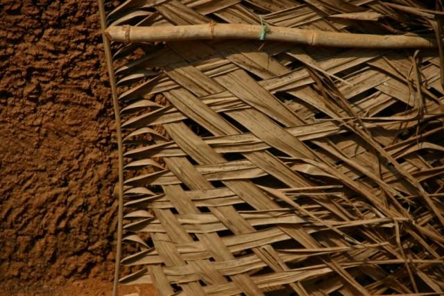 Вторая жизнь пальмовой ветви