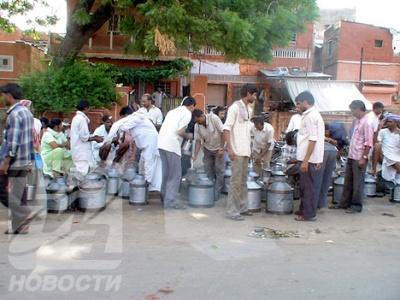 Продажа утреннего парного молока, Джайпур.