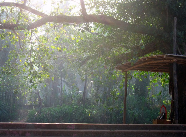 возле храма Махаганапати (Ганеши) в городке Мадур в районе Касаргода
