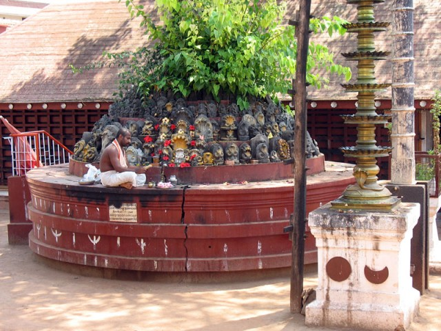 У храма Шивы в городке Манджешвар районе Касаргода