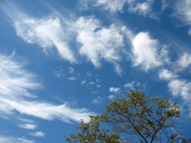 Небо Ауровилля