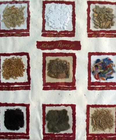 Сырье, из которого делают бумагу на фабрике в Пондичери