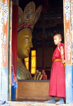 Будда и… Будда. Монастырь Тикси, Ладакх