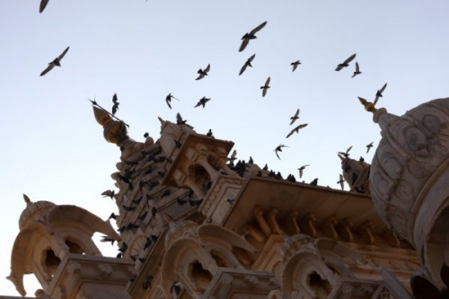 Мемориал Джасвантх-Тхада, где кремировали раджей и живьем сжигали их вдов