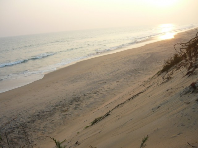Дикие пляжи близ Конарка