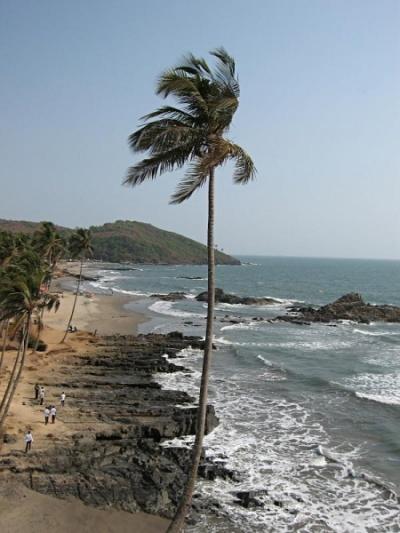 Побережье Индии в районе Гоа