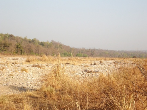 русло реки
