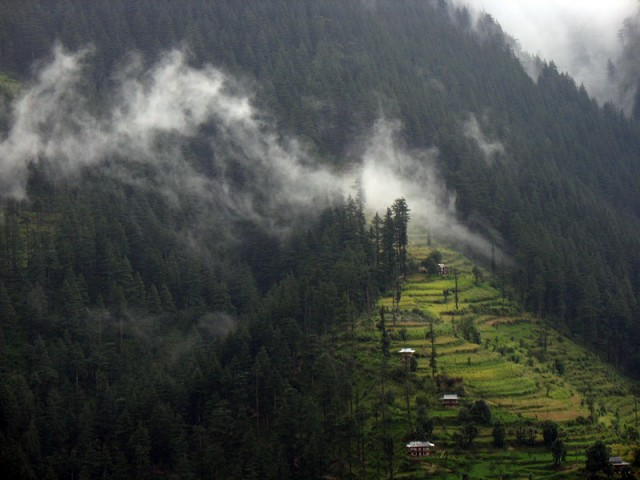 В долине Банджар только что прошел дождь