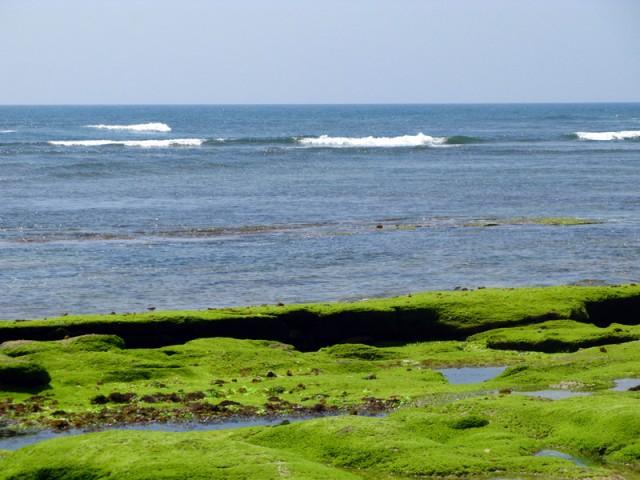 Океан в Двараке во время отлива