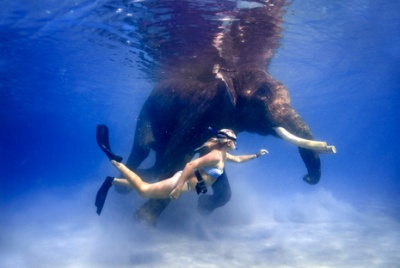 Сноркелинг на Андаманах