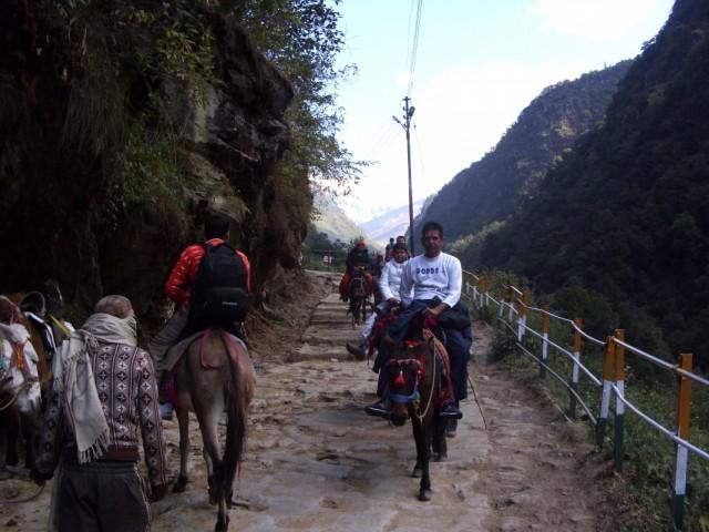 Начало пути в Кедарнах