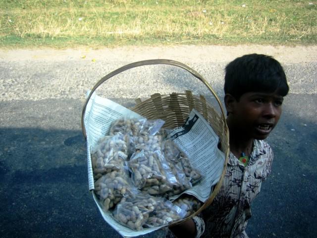 Продавец орехов