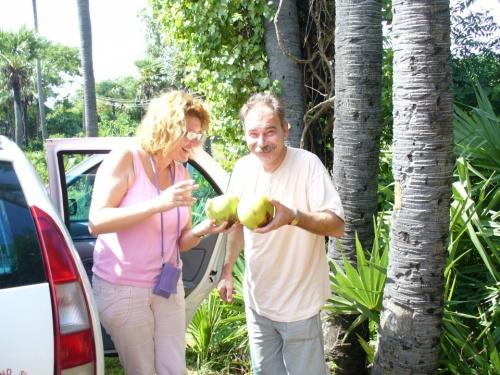 по дороге в Пондичерри. первый раз в жизни -кокосы.